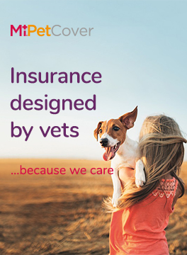 MiPetCover web banner